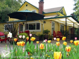 Sonoma Orchid Inn Gallery