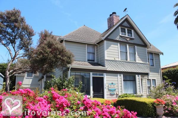 Nantucket Whale Inn Gallery