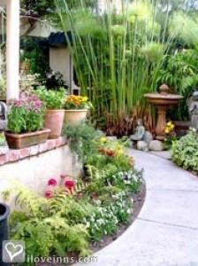 The Garden Cottage Gallery