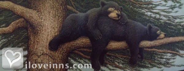 The Bear's Den B&B, L.L.C. Gallery