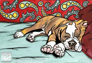 Sleeping Bulldog B&B Gallery