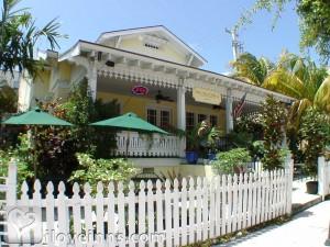 Palm Beach Hibiscus Gallery